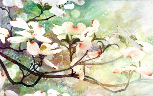 Dogwood in Spring, Giclee Print of Watercolor, Dogwood Blossoms on a Branch, 17 X 26 Inches (Wood Branch Susan)