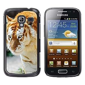 LECELL--Funda protectora / Cubierta / Piel For Samsung Galaxy Ace 2 -- Tigre Albino --