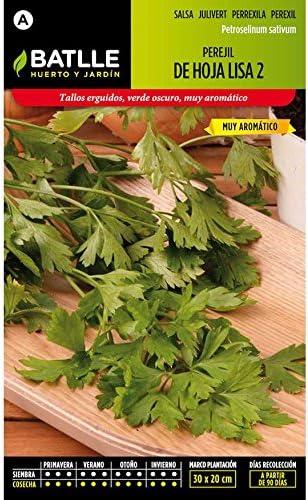 Semillas de Perejil Común de hoja lisa 2: Amazon.es: Jardín