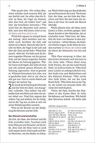 Neues Leben. Die Bibel für Frauen: Amazon.de: Frauke Bielefeldt ...