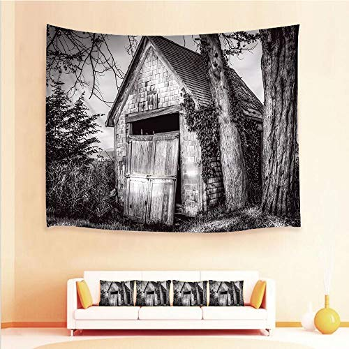 (iPrint 1pcs Hanging Tapestry 4pcs Pillow case,Wall Hanging Blanket Beach Towels Picnic Mat Home Decor,Stranded Stone Barn Farmhouse Rural Countryside,3D Printed Tapestry Bedroom Living)