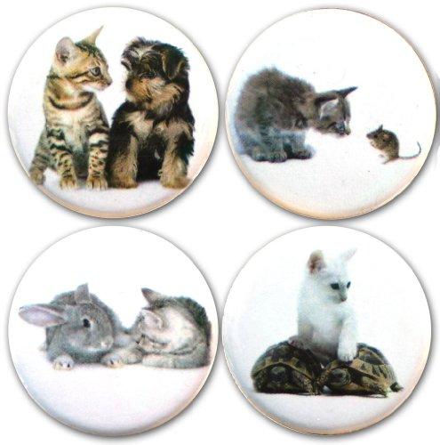 Buttonsmith Kittens Friends Refrigerator Magnet