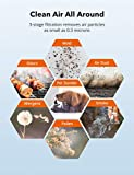 TaoTronics HEPA H13 Air Purifier for
