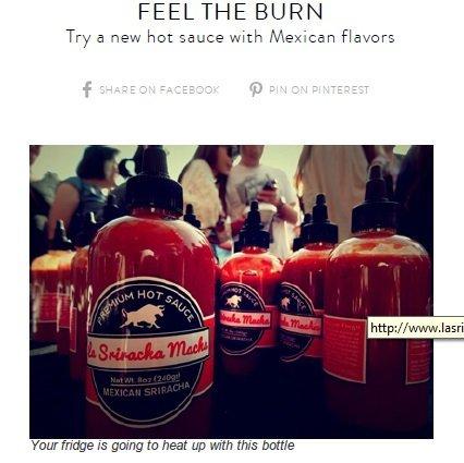 LA CULINARY Authentic Mexican Asian Fusion Hot Sauce Chili Sriracha - La Sriracha Racha Macha Mexican Hot Chili - Bold & Spicy Blend Sauce 8oz - 3 pack