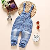 Kidscool Baby & Toddler Girls Denim Blue Cardigan