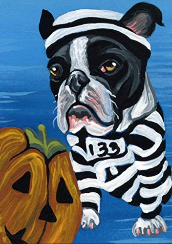 ACEO Original Trading Card Art -Carla Smale- Halloween Jailbird Boston Terrier Dog-free shipping -