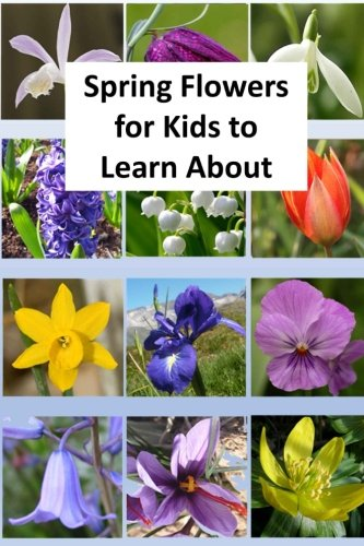 Spring Flowers for Kids to Learn About