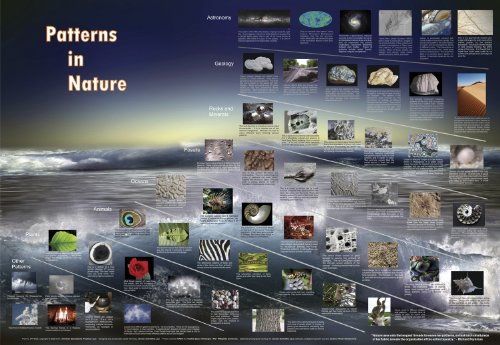 American Educational Patterns in Nature Math Science Art Poster, 38-1/2 Length x 27 Width