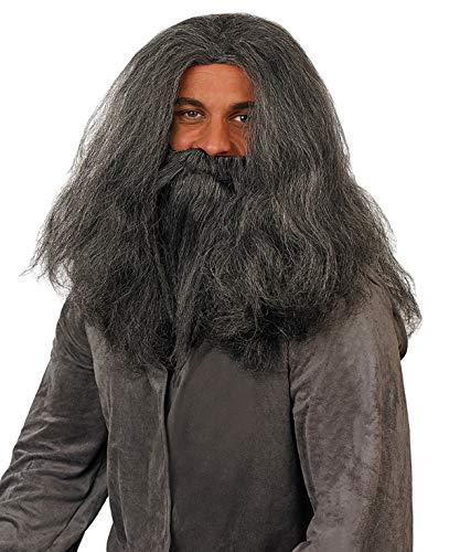 fun shack Men's, Adults Grey Wizard Wig & Beard Set One Size]()