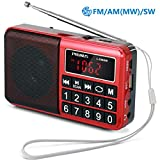 Best Am Fm Portable Radios - PRUNUS Portable SW / FM / AM (MW) Review