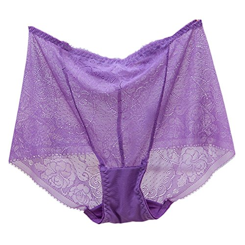 Zhhlaixing Fashion La ropa interior transpirable High Waist Transparent Womens Underwear Hollow Underpants Light Purple