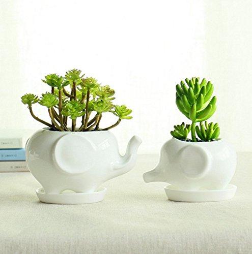 Set of 2 Cute Elephant Flower Pot,Modern White Ceramic Succulent Planter Pots / Tiny Flower Plant Containers (elephant)