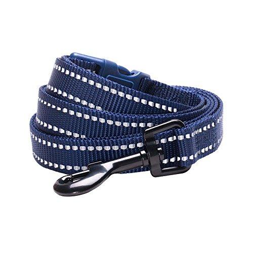Blueberry Pet 6 Colors Durable 3M Reflective Classic Dog Leash 5 ft x 5/8