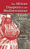 The African Diaspora in the Mediterranean Lands of Islam (Princeton Series on the Middle East)