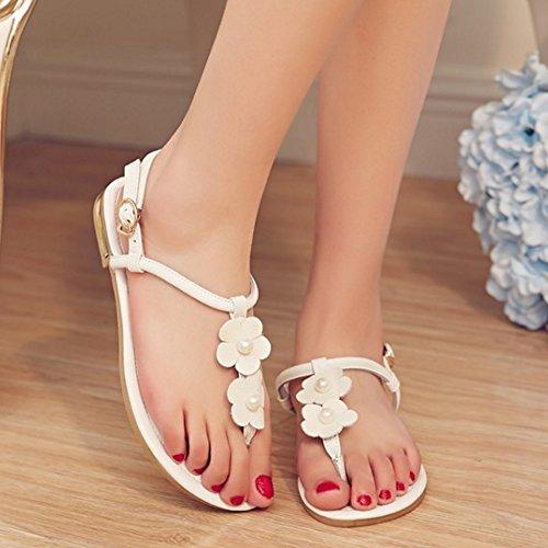 Slingback Plat Courroie Chaussures Tongs Femme TAOFFEN Bohemien 603blanc Thong Sandales T En FwZEnxYqz