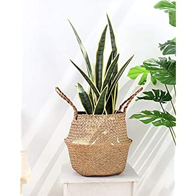 BlueMake Woven Seagrass Belly Basket with Handles for Storage Plant Pot Basket, Toy, Laundry, Picnic and Grocery Basket with Plastic Tray (Medium, Original) : Garden & Outdoor