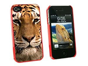 Graphics and More Bengal Tiger Face - Snap On Hard Protective Case for Apple iPhone 4 4S - Red - Carrying Case - Non-Retail Packaging - Red