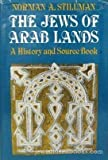 The Jews of Arab Lands : A History and Source Book, Stillman, Norman A., 0827601166