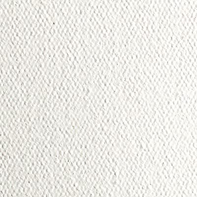 """Creative Mark Spectrum Multi-Media Acrylic Primed Cotton Roll - Finest Imported Pure Cotton Sheeting Uniform Weave Even Texture - [15 oz Roll 84"""" x 6 Yards]"""