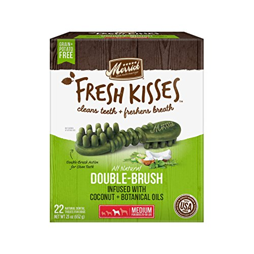 Fresh Kisses Coconut Oil + Botanicals Medium Brush - Value Box (22 Ct)