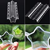 Hot Sale Fruit Shaping Mold Plastic Star/Heart Shape Cucumber Apple Strawberry Mold Vegetable Growth Forming Mould Garden Tool (Long Star)