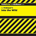 Into the Wild: CliffsNotes Audiobook by Adam Sexton Narrated by Luke Daniels