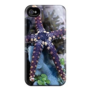 Flexible Tpu Back Case Cover For Iphone 4/4s - Beautiful Starfish by icecream design