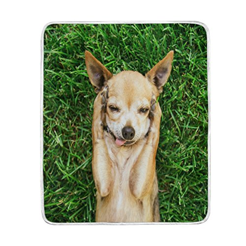 ALAZA Home Decor Hipster Chihuahua Dog Green Grass Soft Warm Blanket for Bed Couch Sofa Lightweight Travelling Camping 60 x 50 Inch Throw Size for Kids Boys Girls