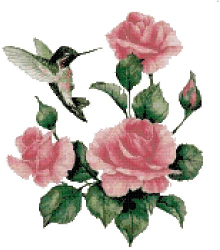 (Hummingbird and Roses Counted Cross Stitch Pattern)