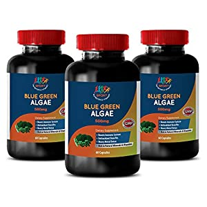 antioxidant Vitamins for Men – Organic Blue Green Algae 500mg – stem Cell Skin Repair -…