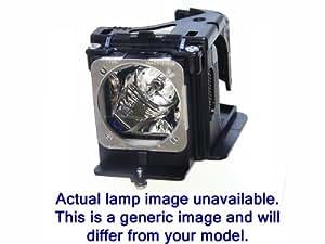 Optoma SP.8LM01GC01 Lampara proyector original para EW762