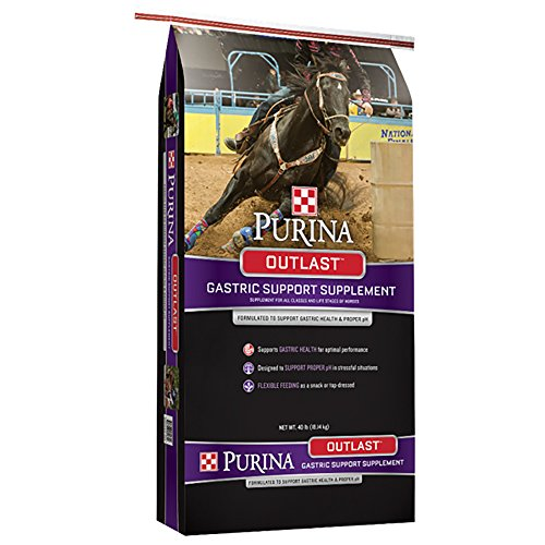 Purina Animal Nutrition Outlast Gastric Support Supplement 40 (Best Ulcer Supplement For Horses)