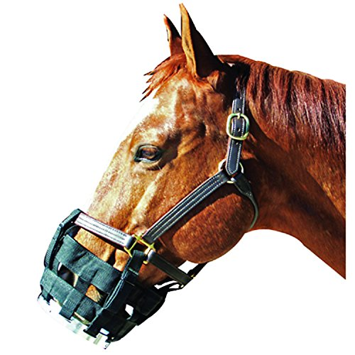 Cribbing Muzzle (BEST FRIEND EQUINE Free-To-Eat Cribbing Muzzle 007089)