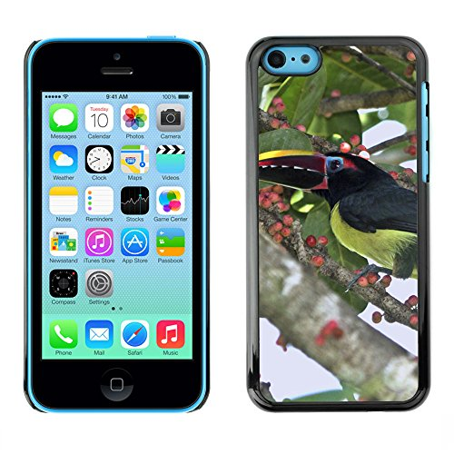 Premio Sottile Slim Cassa Custodia Case Cover Shell // F00008588 oiseau // Apple iPhone 5C