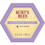 Burts Bees Candles Blyth Home Scents International 111239 Burt'S Bees Lavender Fields Candle Tin