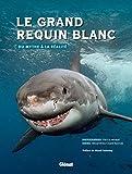 Le grand requin blanc: Du mythe à la réalité
