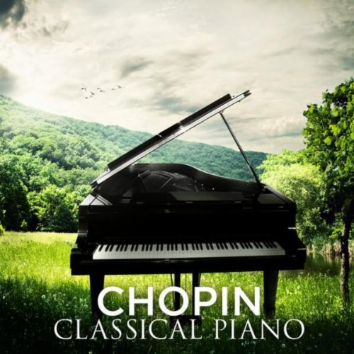Nocturne No. 20 in C-Sharp Minor, Op. Posth.: Lento con gran espressione