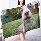 AmaPark Luxury Elegant Bath Towels A Lovely pet Dog Luxury Hotel & Spa Towel L63 x W31.2 INCH
