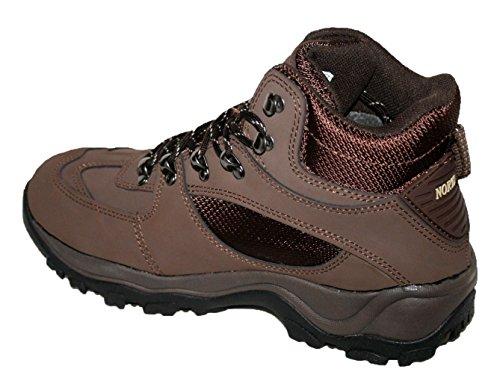 Pour Marron Homme Territory Montantes Chaussures Northwest FxwSqCaW