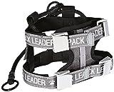 Pack Leader Collar - Medium