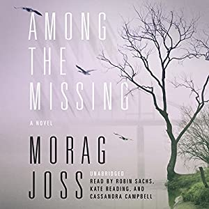 Among the Missing Audiobook