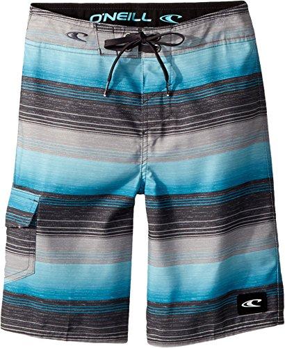 O'Neill Big Boys Santa Cruz Print Boardshort, Stripe for sale  Delivered anywhere in USA