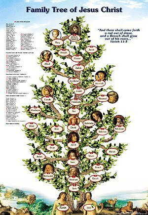 Jesus Family Tree Poster - From Adam to - Family Tree Jesus