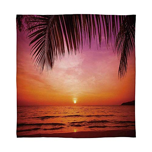 (TecBillion Ultra-Soft Flannel Blanket,Tropical Decor,for Bed Couch Chair,Size Throw/Twin/Queen/King,Exotic Sunset Above Sea Scene from Coconut)