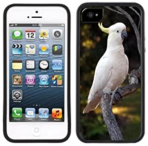 Cockatoo Bird Handmade iPhone 5 Black Bumper Plastic Case