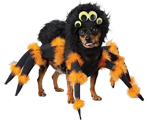 California Costumes Spider Pup Dog Costumes, Pet, Black/Orange, Small - http://coolthings.us