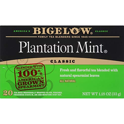 Bigelow Plantation Mint Black Tea Bags 20-Count Boxes (Pack of 6) Caffeinated Individual Black Tea Bags, for Hot Tea or Iced Tea, Drink Plain or Sweetened with Honey or Sugar (Refreshing Tea)