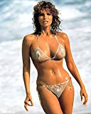 Raquel Welch 8x10 Photo - No Image is Cropped. No white or black borders, What you see is what you get #MS0358