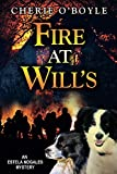 Fire at Will's (An Estela Nogales Mystery Book 1)