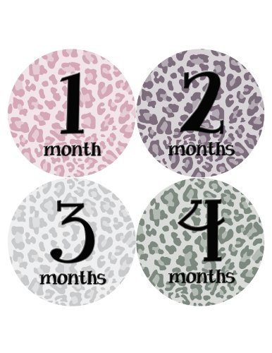 Months in Motion 042 Monthly Baby Animal Print Stickers Baby Girl Month - Girls Pics Cheetah